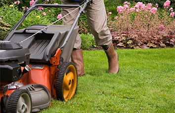 LAWN CARE BLOG
