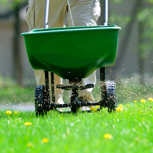 Lawn Treatments in Champaign IL